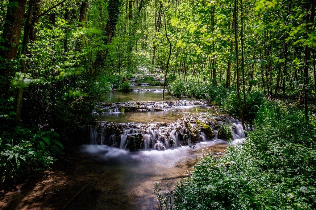 160507-nature-141313.jpg